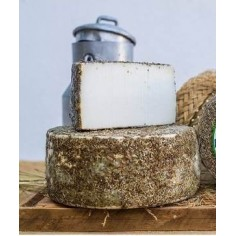 Cured cheese aging in...