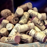 Bodega online con los mejores vinos de España | Sabores de Carmen