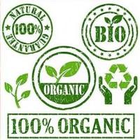 Productos Ecológicos Online| Sabores de Carmen