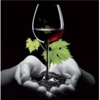 Vino Ecológico Sin Sulfitos| Sabores de Carmen