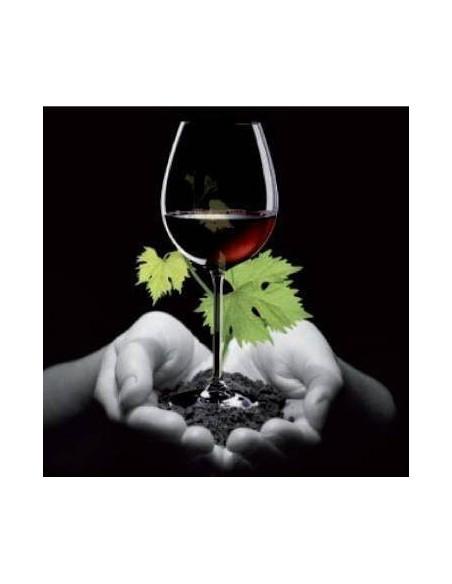 Ökologischer Wein